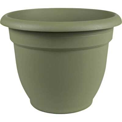 Bloem Ariana 6.5 In. H. x 6 In. Dia. Plastic Self Watering Thyme Green Planter