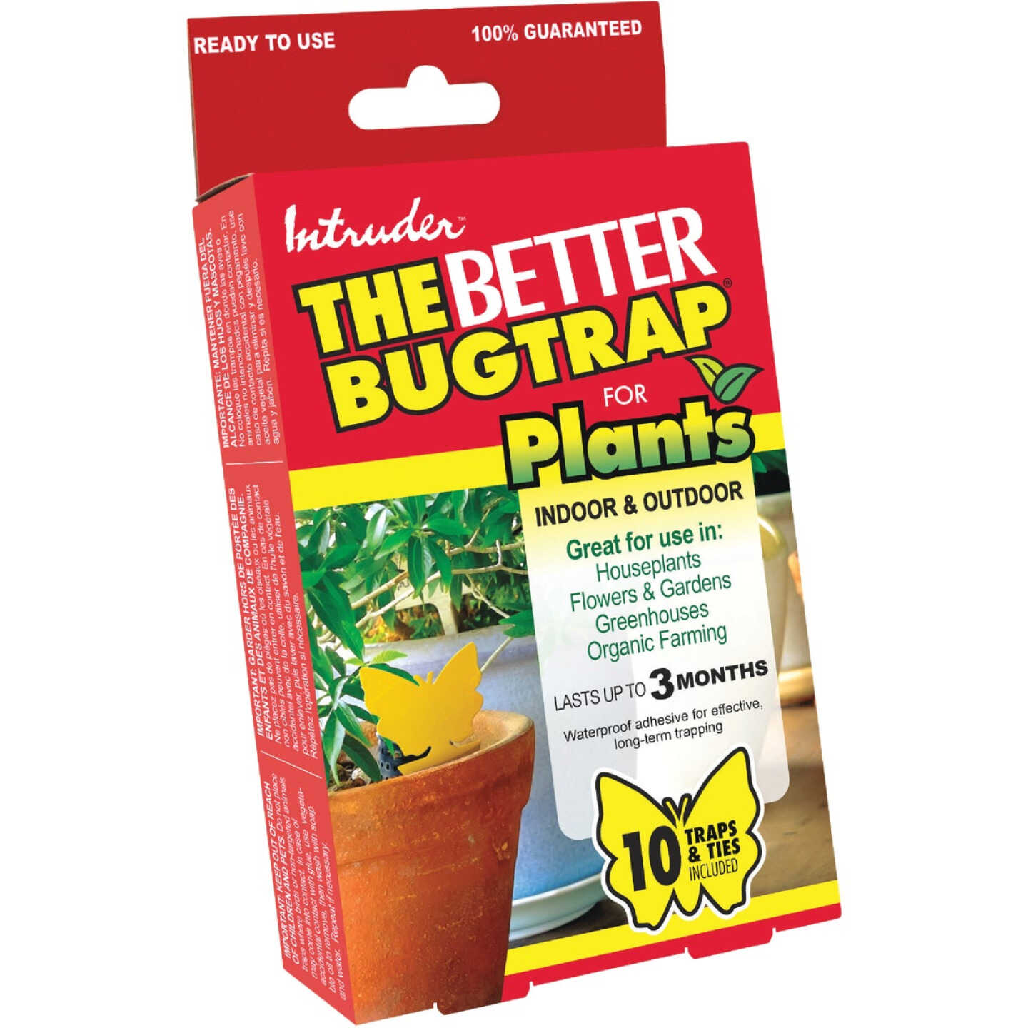 Intruder The Better Bugtrap for Plants Disposable Indoor/Outdoor Insect Trap (10-Pack) Image 1