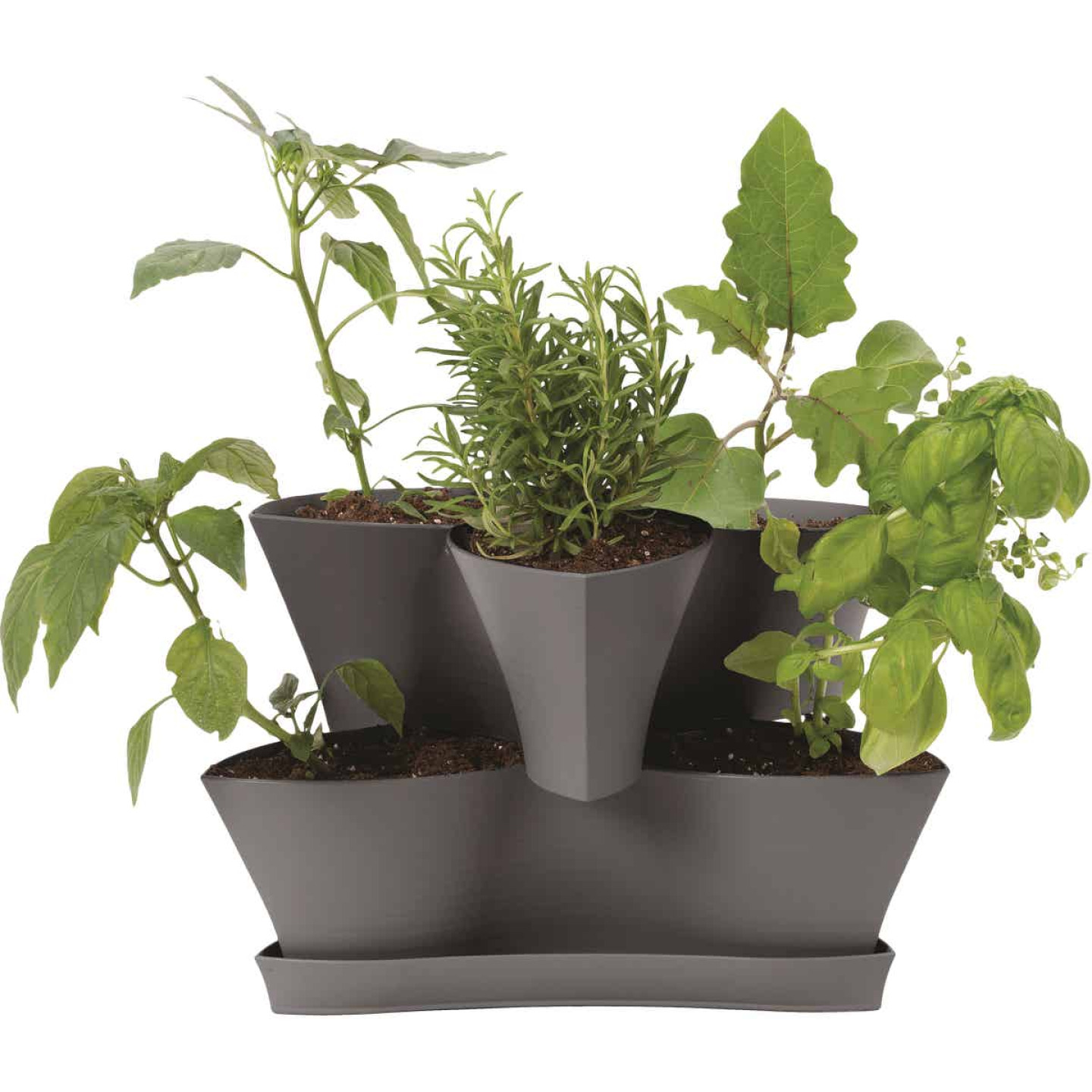 Bloem Collins 16 In. x 10.4 In. Charcoal 2-Level Planter Image 1